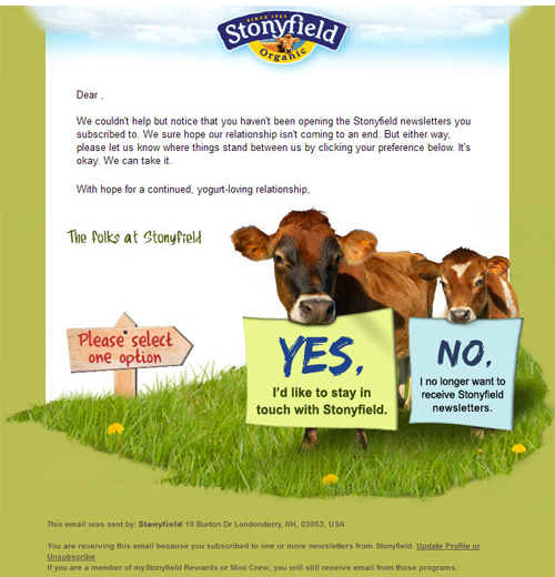 How to Use Lead Nurturing to Re Engage Your Contact List image Stony Field Survey Example