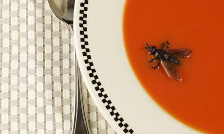 The Silent Majority: Social Data Isn't Representative Of Everyone image Fly in soup 008.jpg
