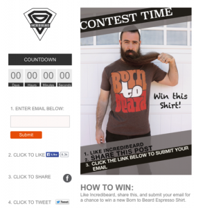 The Top 10 Facebook Campaigns of 2014 image Incredibeard 286x300.png