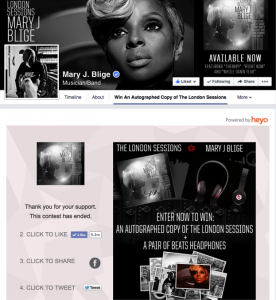 The Top 10 Facebook Campaigns of 2014 image MaryJBlige 276x300.png