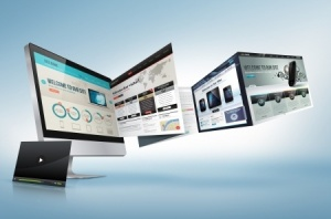 Web Strategy - Integration of Development Design and Content