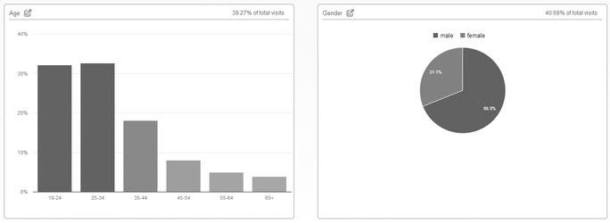 Analytics Demographic
