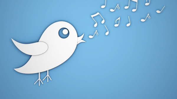 How to follow up on link requests tweet bird singing
