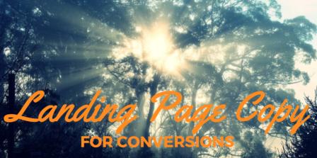 6 Landing Page Copywriting Principles for More Conversions - landing page copywriting tips