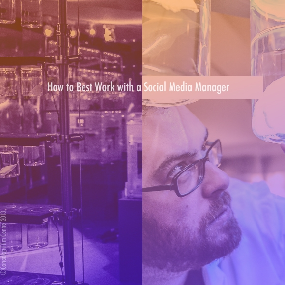 How to Best Work With a Social Media Manager