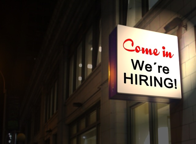 Why Use Professionals When Job-Hunting