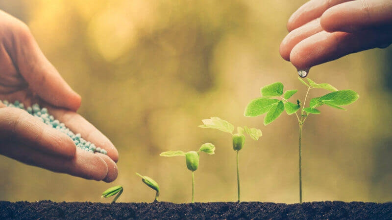 How to nurture new vs. existing leads