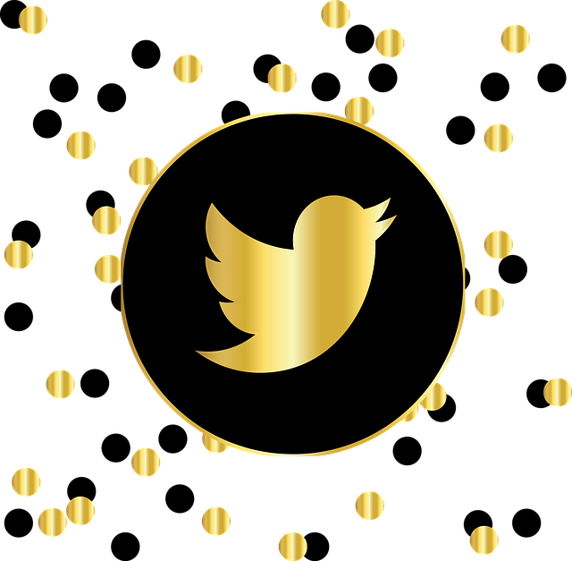 How to Set Up Your Twitter Brand Account the Right Way