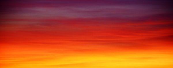 CMO Accountability: What's the Time Horizon?