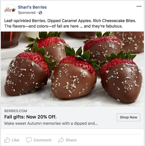 Facebook ad transparency ecommerce strategy Sharis Berries ad