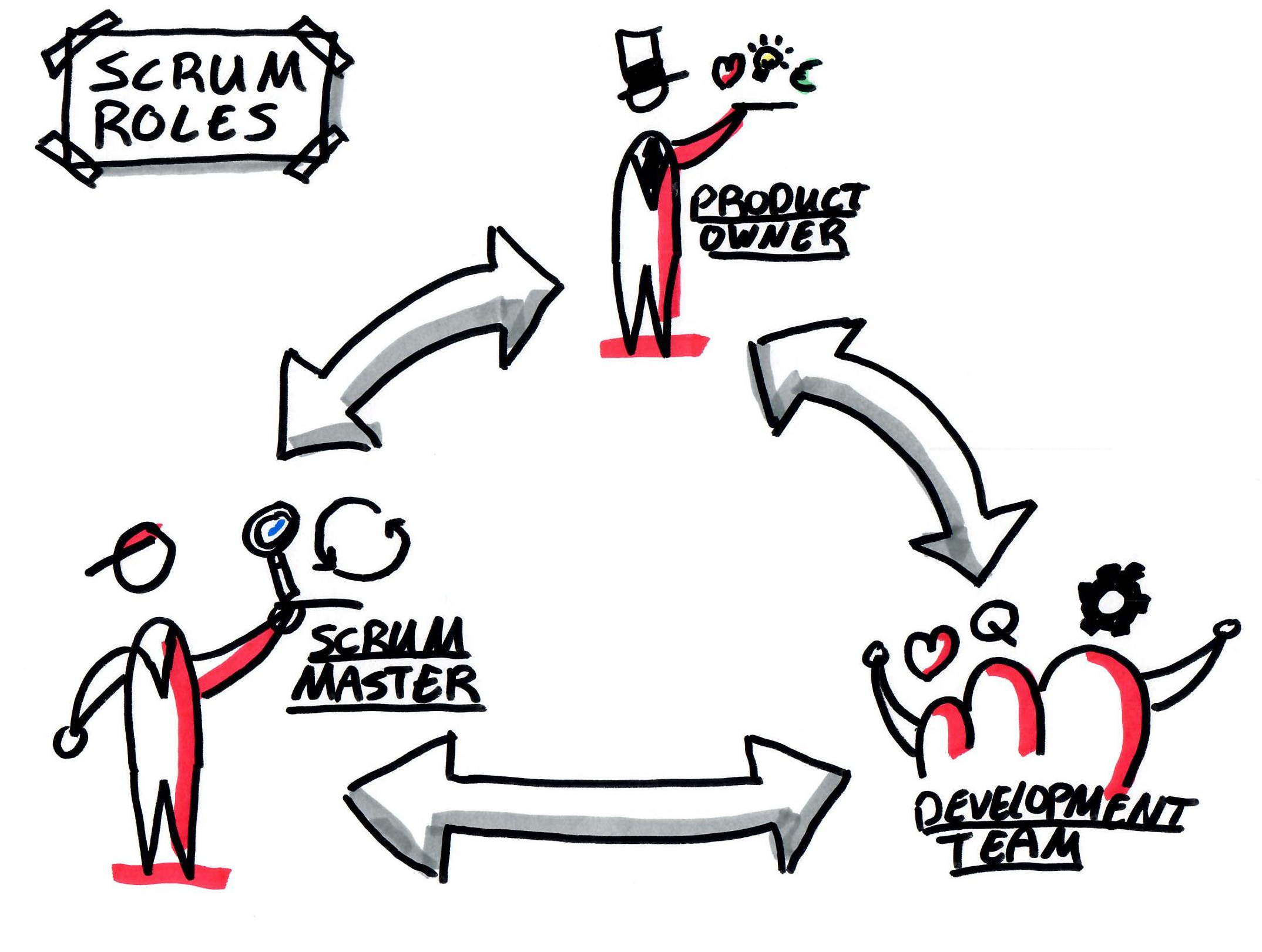 Roles of Scrum