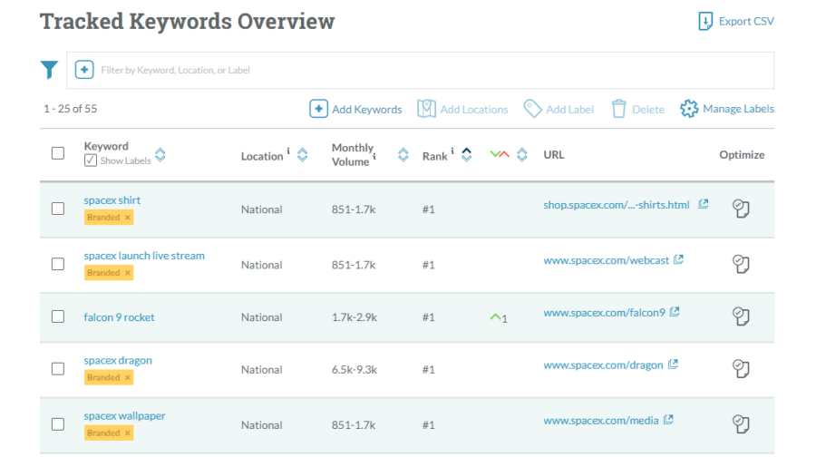 10 of the Best Keyword Ranking Checkers to Consider