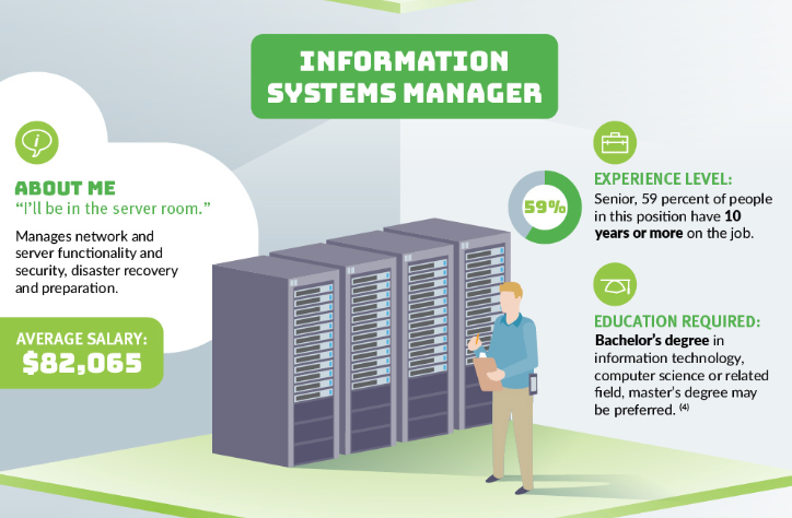 IT systems manager's job