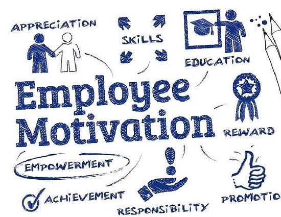 The Best Employee Traits for an Organization