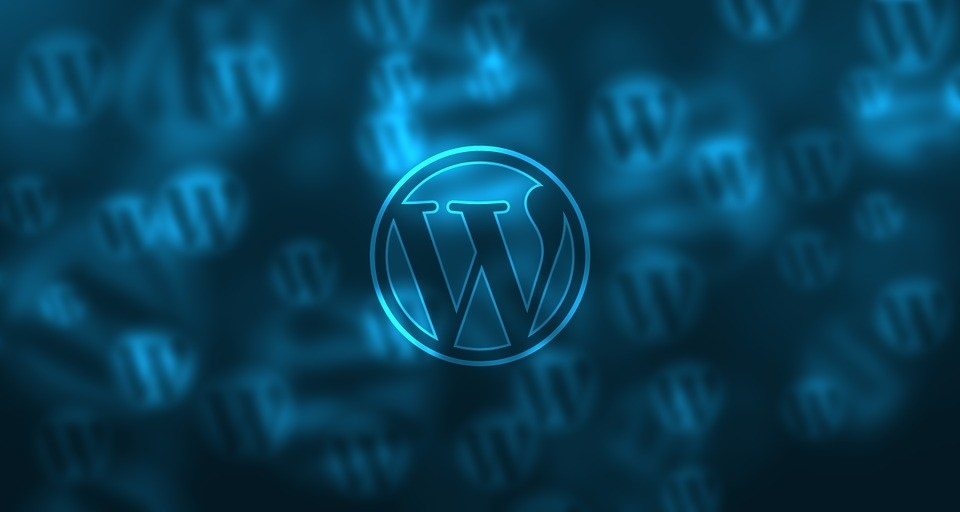 How to Get SEO Results from Your WordPress Website