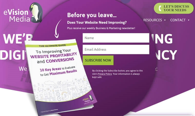 Get More Website Leads  and  Grow Your Sales