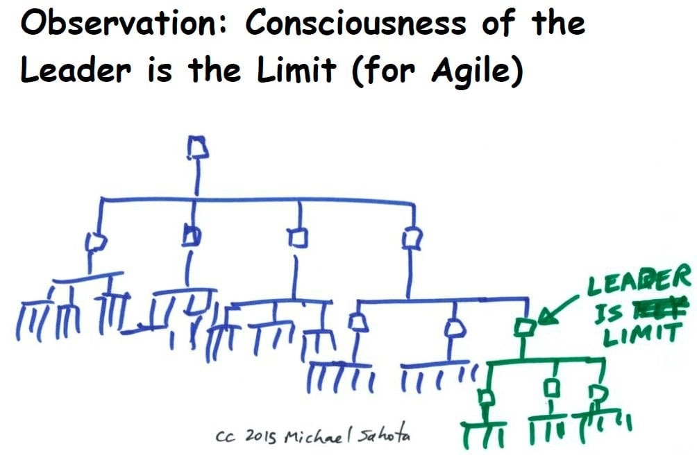 Agile Leader Role During an Agile Transformation Part 2