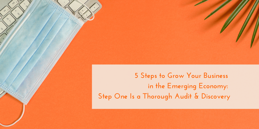 5 Steps to Grow Your Business in the Emerging Economy: Step One is a Thorough Audit  and  Discovery