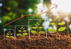 How to Move From a LeadGen Machine to Organic Growth Machine