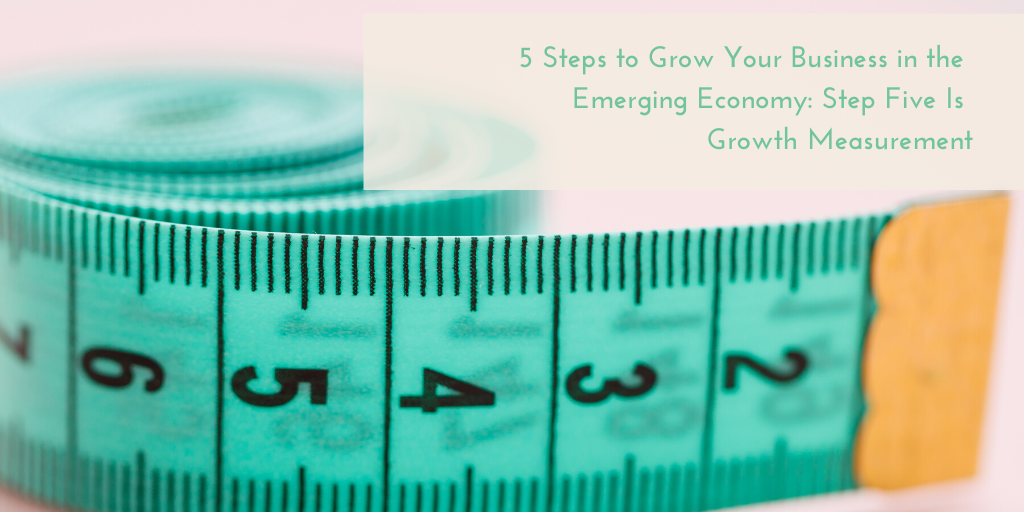 5 Steps to Grow Your Business in the Emerging Economy: Growth Measurement