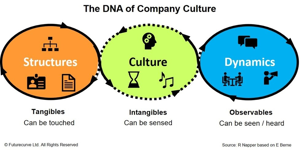 Changing Company Culture – Launching the Journey