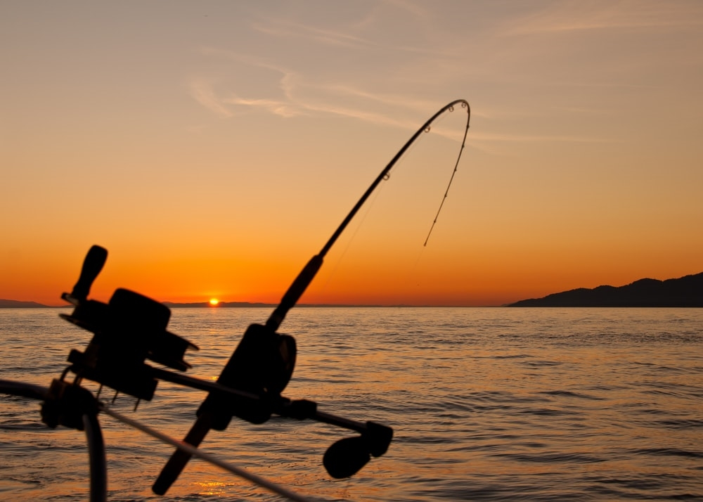 How My Grandfather's Fishing Wisdom Applies to Customer Acquisition